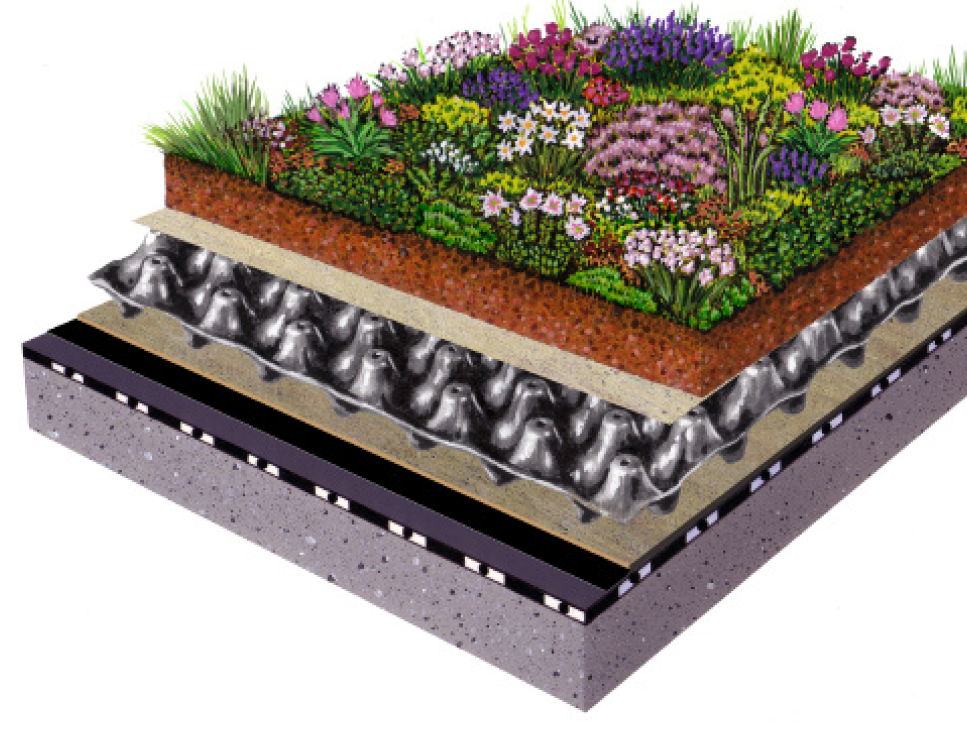 This permanently reliable ZinCo Green Roof Assembly consists of the following functional layers: protection mat, drainage layer, filter sheet, growing medium and plants.
